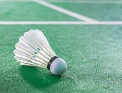 Indoor Badminton ball on green Badminton court